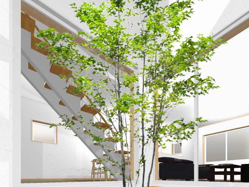 室内パース:中庭より・・・視線を気にすることのない中庭に面する窓にはカーテンは不要。明るいリビングとなります。