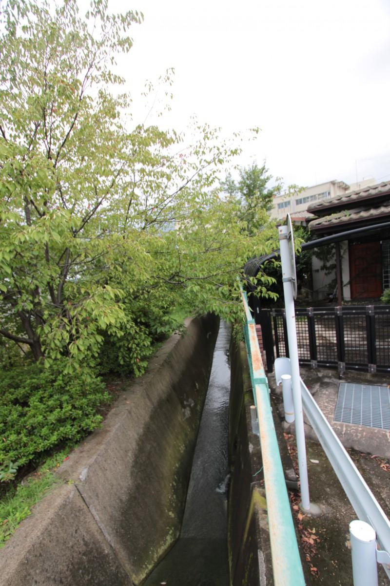 敷地の東面は水路となっております。