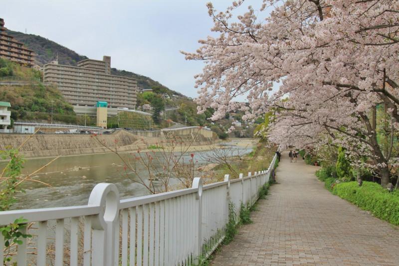 のどかな自然が広がる、宝塚駅周辺。